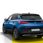 Nueva edición especial «Opel 2020» para el Grandland X